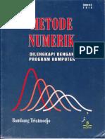 Metode Numerik.PDF