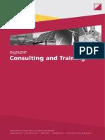Consulting_Brochure_EN.pdf