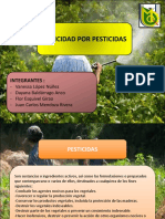 6 Plan Manejo Ambiental