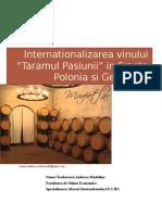 Internationalizarea Unui Nou Produs