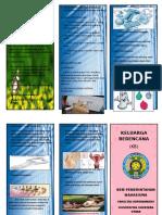 100377116-Leaflet-Kb.doc