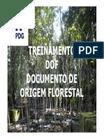 DOF - Documento de Origem Florestal