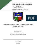 Apreciación del congreso Coneia puno 2018