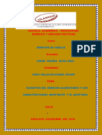 Elementos Del Derecho Alimentario y Sus Caracteristicas El Adoptante y El Adoptado