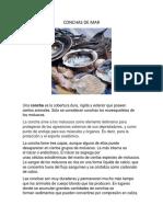 CONCHAS DE MAR.docx