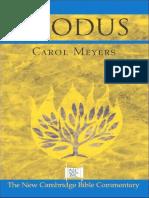 MEYERS, Carol (2005), Exodus. New Cambridge Bible Commentary. NY, Cambridge University Press (c)