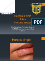 Herpes Simple y Zoster