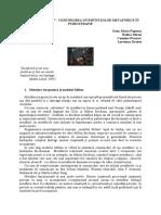 Modelul Milton nlp.pdf