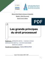 exposé ( droit processuel) (1).docx