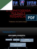 Classificacao Radiografica Das Lesoes Periapicais