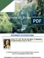 AUla 5 - Ecologia de Ecossistema