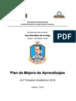 Plan de Mejora 2018 IGV