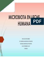 Dra Ibanez Microbiota