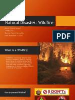 Natural Disaster Wildfire_Vicente Yantani