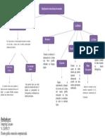 Sem 6. Mapa Conceptual.pdf