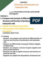 Cell Prokaryot