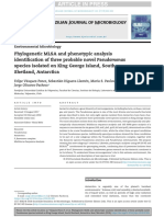 Phylogenetic MLSA and phenotypic analysisidentification of three probable novel Pseudomonasspecies isolated on King George Island, SouthShetland, Antarctica