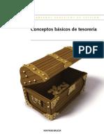Conceptos Básicos de Tesorería.pdf