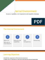03 the Internal Environment