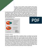 Endosimbiosis Primer&Secondary
