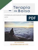Direito Administrativo Descomplicado - Marcelo Alexandrino e Vicente Paulo (1)
