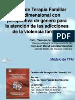 1 Modelo TFM