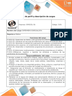 Formato perfil y descripción de cargos
