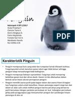 Morfologi dan Anatomi Penguin
