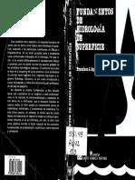Facsimil Fundamentos de Hidrologia de Superficie-Aparicio