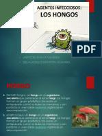 EXPO-MONTOYA.pptx