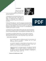 telar mapuche el sentido de tejer.pdf