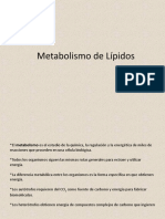 Metabolismo de Lipidos 2° -2
