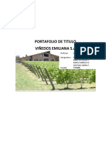 Portafolio Titulo Viñedos Emiliana