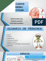 Accidente Cerebro Vascular Patologia