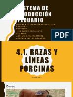 Pecuario- U4