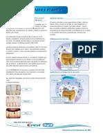 Protocolo de Endocarditis Infecciosa
