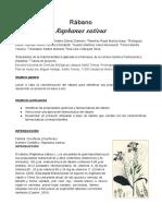 Manual Quimica Organica 2