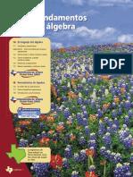 A1spc01 Fundamentos Del Álgebra