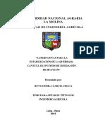 Alternativas Para La Estabilización de La Quebrada Cantuta II Con Fines de Mitigación de Huayco (1)