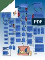 sesion 8 metabolismo del colesterol y lipoproteinas