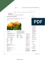 detox.pdf
