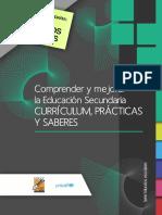 CURRICulum PRACTicas Y SABERES.pdf
