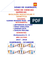 Polimorfismo de Simple Nucleótido