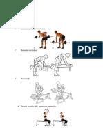 Exercícios Academia