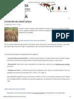 Corrección de Suelos Salinos « Agrologica – Ingenieria Agrícola