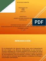 Taller nutricion de rumiantes-Grupo 13.pptx