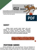 Anjing Gila [Rabies]