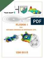 GINO-FLUIDOS.docx
