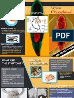 Clonorchiasis.pdf