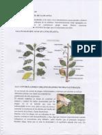 img192.pdf